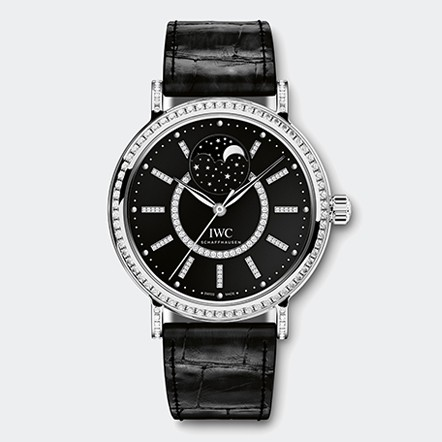 IW459004 Watch Front