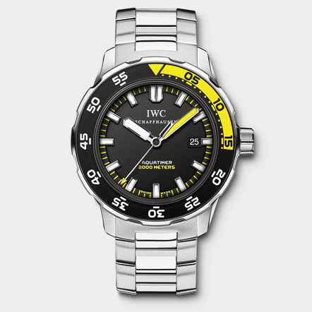 IW356808 Watch Front