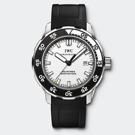 IW356811 Watch Front