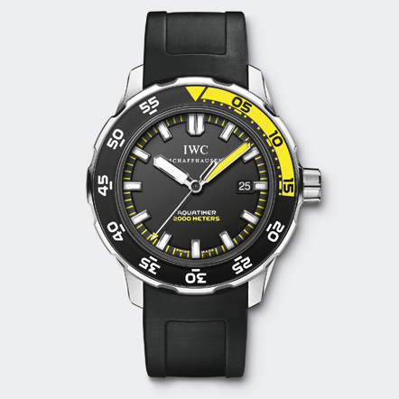 IW356810 Watch Front